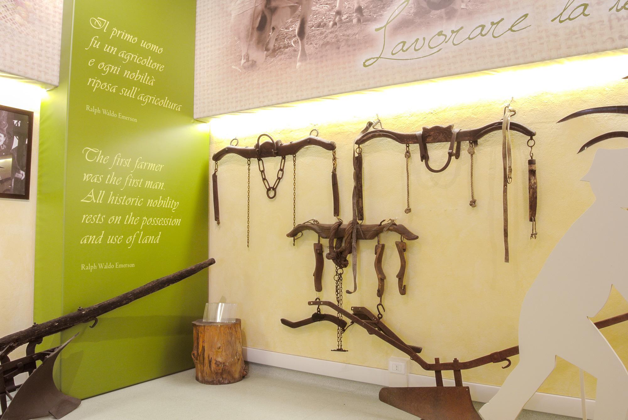 1-Museo-del-Castaldo