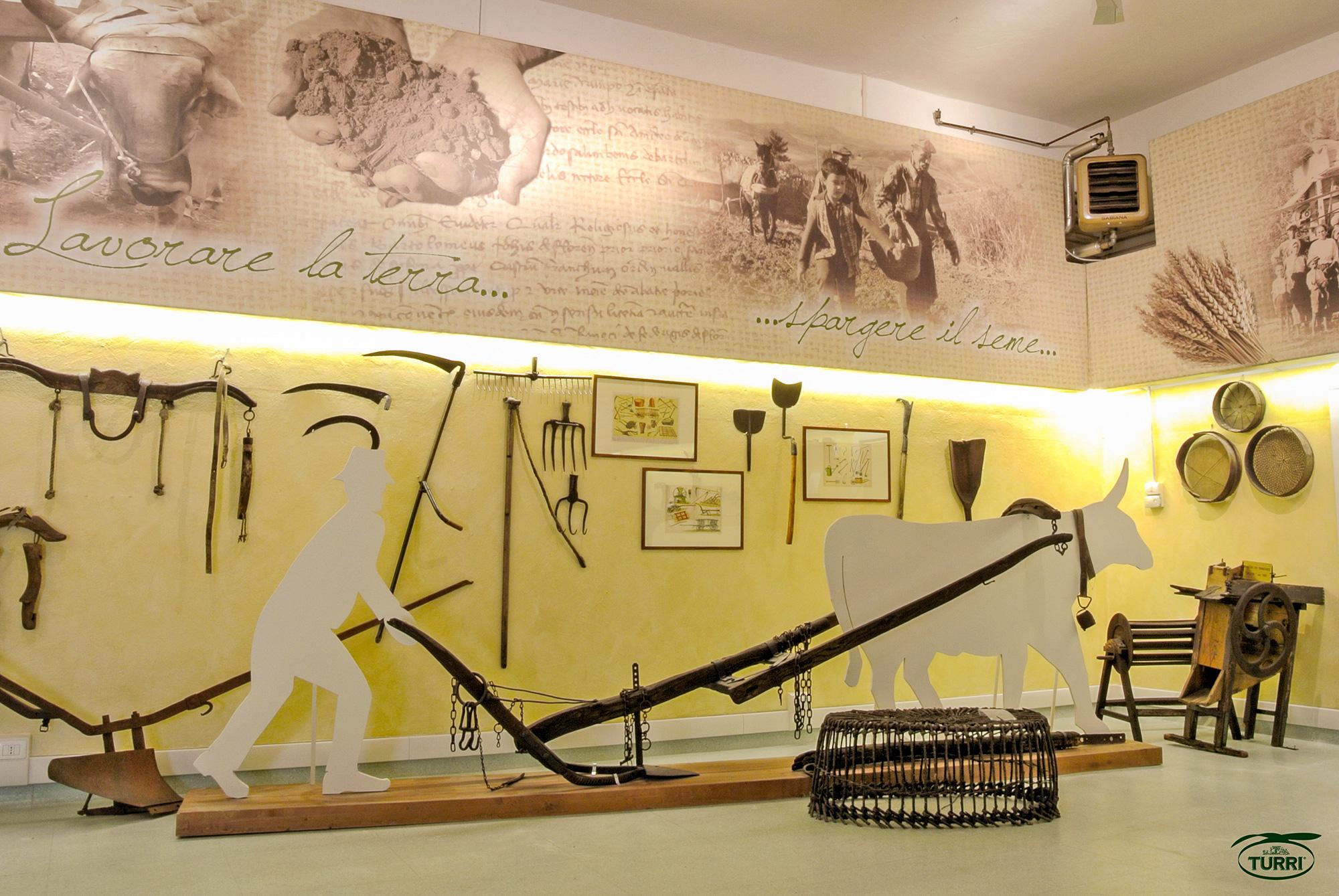 2-Museo-del-castaldo-Particolare